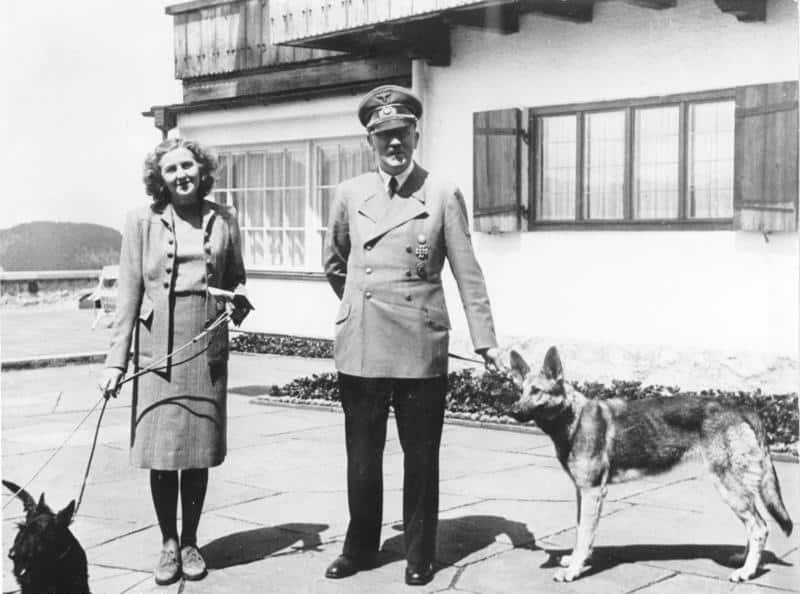 perros alemania nazi